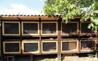 Как построить и обустроить домик для кролика своими руками в домашних условиях