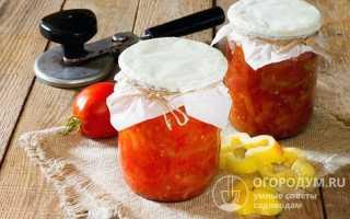 12 вкусных рецептов консервированного болгарского перца в томате на зиму