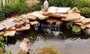 Как правильно выбрать место для водоема на даче
