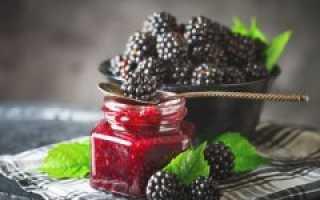Варенье из ежевики – простые рецепты для борьбы с простудой + видео