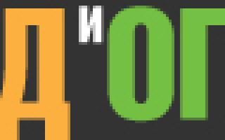 Вербейник клетровидный (ландышевый): посадка и уход, фото в ландшафтном дизайне
