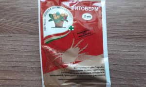 """Инструкция по применению биопрепарата """"Фитоверм"""" для комнатных растений"""