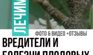 Вредители плодовых деревьев