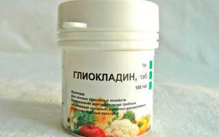 Биофунгициды для рассады (Глиокладин) – применение и отзывы