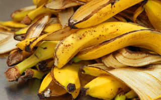 Банановая кожура как удобрение для помидоров – как подкормить рассаду томатов, рецепты, отзывы, видео