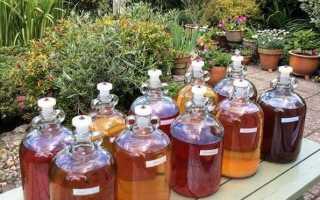 Домашнее вино из крыжовника своими руками: способы, необходимые материалы