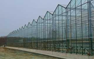 Как закрепляют стекло в конструкции теплицы?