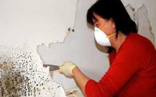 Как избавиться от сырости на стенах в квартире своими руками? Чем вывести навсегда?