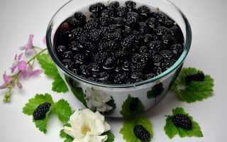 Варенье из шелковицы на зиму – пошаговый рецепт с фото
