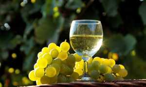 Домашнее вино из белого винограда: как приготовить