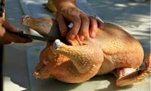 Как разделать курицу на порционные куски, шашлык, отделить мясо от костей