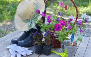 7 лайфхаков, которые облегчат вашу дачную жизнь