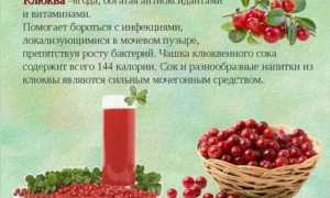 17 лучших рецептов полезного клюквенного морса из замороженных ягод