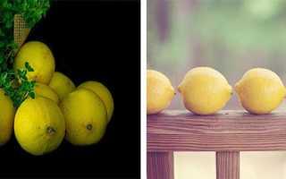 Как заморозить лимоны на зиму в холодильнике