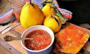 Айвовый джем: самые вкусные пошаговые рецепты десерта из айвы через мясорубку и в мультиварке