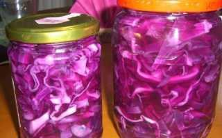 Засолка краснокочанной капусты на зиму в банках: можно ли солить красную капусту, как правильно её засолить вкусно и быстро, лучшие рецепты