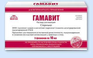 Гамавит для кроликов: инструкция по применению препарата