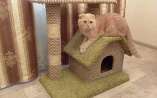 Домик для кошки своими руками: чертежи с размерами, пошаговая инструкция