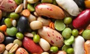 Виды бобовых культур