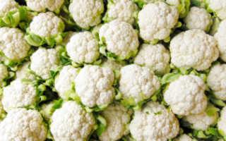 Заготовки из цветной капусты на зиму: польза и вред овоща, а также пошаговые рецепты маринованных, соленых и других блюд с фото и варианты их подачи