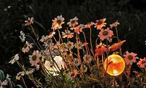 Декор сада светильниками