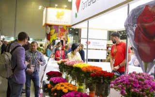 Итоги выставки «ЦветыЭкспо'2020» и начало подготовки «ЦветыЭкспо'2020»