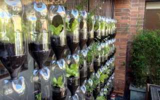 Грядка из пластиковых бутылок