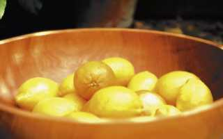 Замороженный лимон: польза для здоровья, отзывы врачей, применение, как заморозить и хранить в морозилке