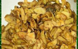 Как использовать картофельные очистки в качестве удобрения на огороде и не только – полезные советы