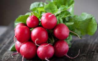 Высокоурожайные сорта редиса