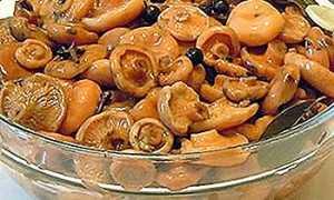 Как мариновать грибы рыжики: легкие и быстрые рецепты
