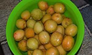 Абрикосовое варенье дольками: 8 рецептов приготовления консервации на зиму
