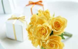 Желтые розы: значение, к чему дарят женщине, девушке, что обозначает такой подарок
