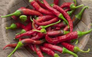 Как консервировать перец чили максимально сохранив полезные свойства