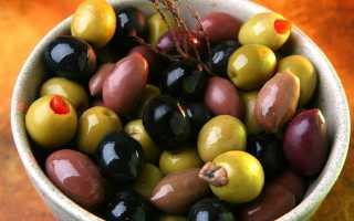 Выращивание оливкового дерева из косточки в горшке: пошаговый процесс