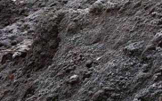 Гумус: определение состава, содержание и типа почвы