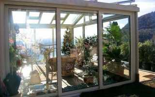 Зимний сад в доме – что учитывать при возведении постройки? + видео