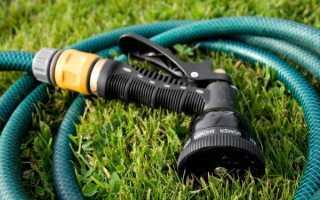 Как поливать тыкву: в жару, в открытом грунте и теплице, в период созревания