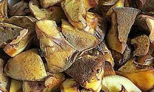 Как обработать грибы маслята после сбора